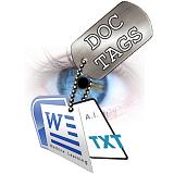 Managing Enterprise Informational Asset Metadata with Doc-Tags
