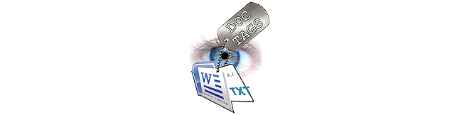 Automating Metadata Management - Doc-Tags.com