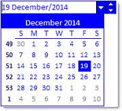 Studio Controls COM ctDate - Date Selection